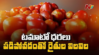 Chittoor Tomato Farmers Facing Trouble Due To Low Price In Market | Ntv