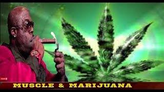 Marijuana & Bodybuilding [GOOD - or - BAD]