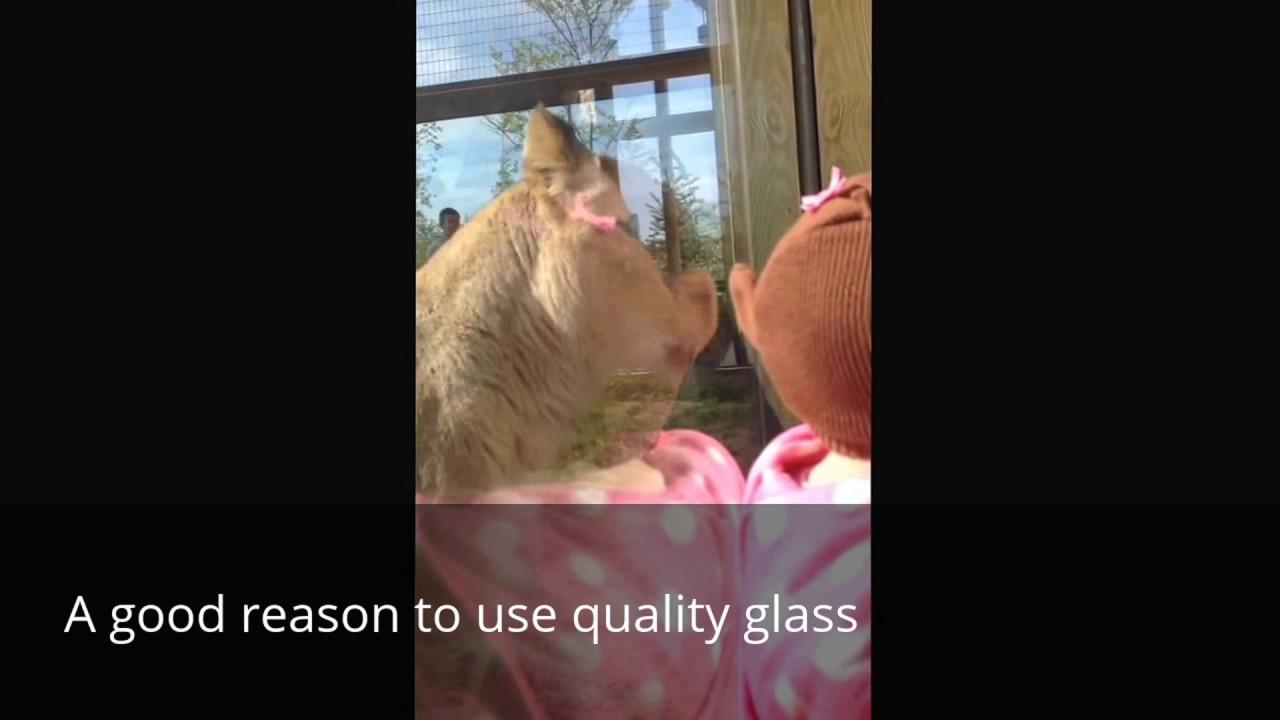 Patio Door Glass Repair Replacement Company Phoenix Az Youtube