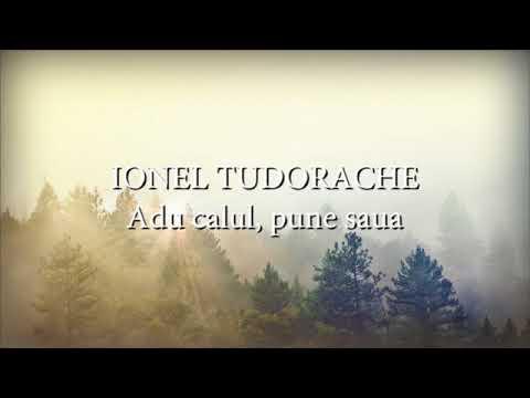 Ionel Tudorache - Adu calu, pune saua (versuri, lyrics, karaoke)