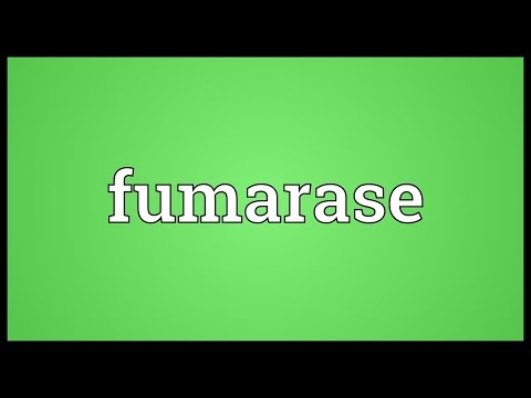 Fumarase Meaning
