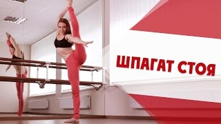Как Сделать Затяжку Стоя | Stretching [90-60-90]
