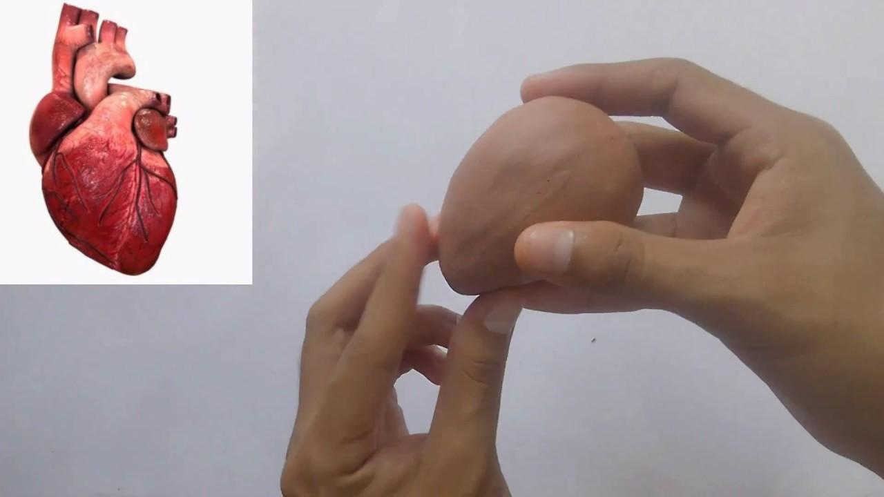 Como Esculpir Un Corazón Escultura Youtube