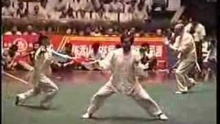 Wang Xian Chen Style Xin Jia Yi Lu