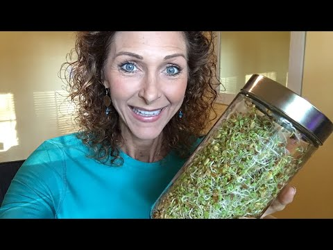 SPROUTING --- EASY AND CHEAP -- LIVE FOOD FOR A LIVE BODY/MO