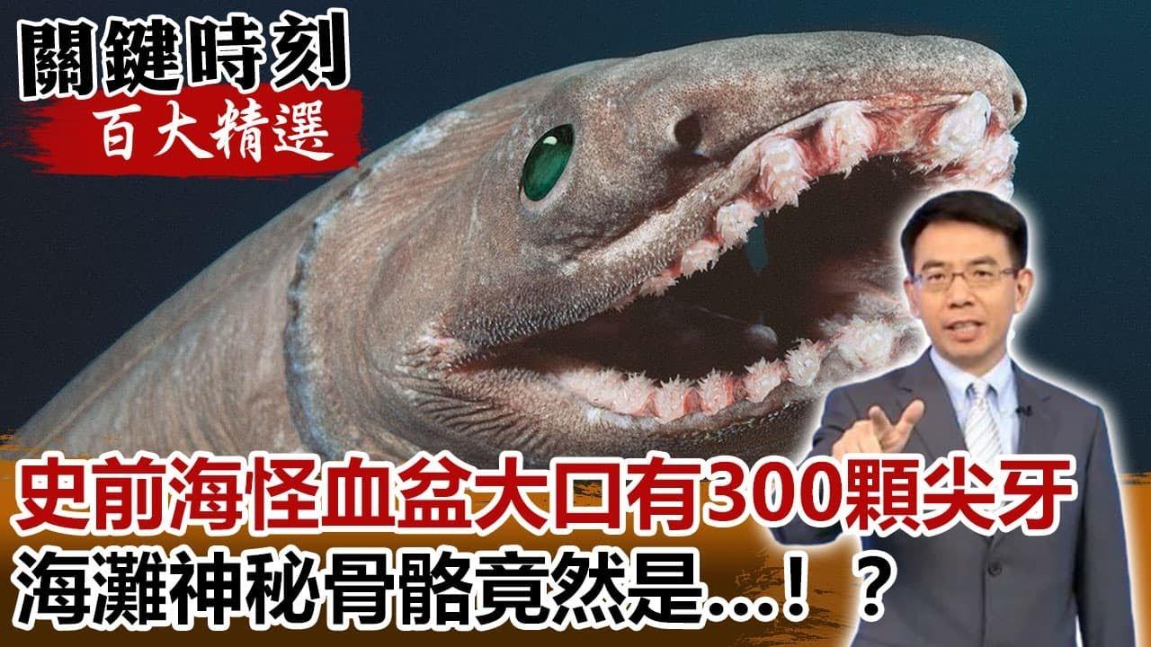 「史前海怪」血盆大口有300顆尖牙 海灘神秘骨骼竟然是…!?【關鍵時刻百大精選】- 劉寶傑 朱學恒
