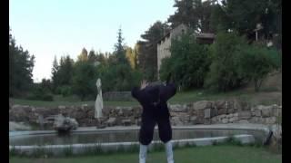 Master chen lisheng 's Wudang  Five Health Qigong