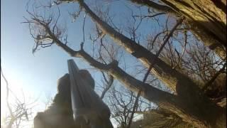Kragejagt 2016-03-16 / Crow Shooting