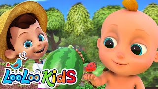 🍉Down By The Bay - LooLoo KIDS Nursery Rhymes and Children`s Songs
