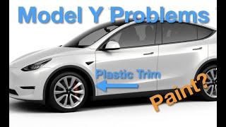 Model Y Plastic Trim?