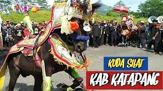 Download Video Atraksi kuda renggong kecamatan katapang MP3 3GP MP4