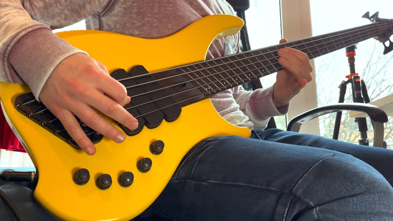 DEAR MOTHER // Satellite // Bass Playthrough