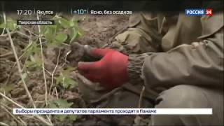 Смотреть видео Артефакты войны в Тверской области поисковые отряды несут в махту памяти   Россия 24 онлайн