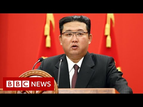 North Korea fires suspected submarine-launched missile off Japan - BBC News