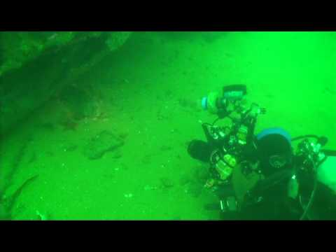 Palos Verdes, California, scuba, diving, C-Dory, Tomcat, Electric Ray, Torpedo Ray, Landing Craft