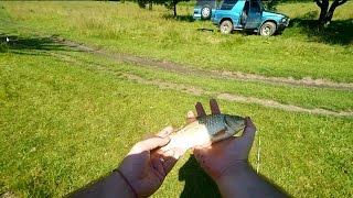 Ловля карася на реке Южный Буг. Снасть убийца карася. [Отчеты о рыбалке]