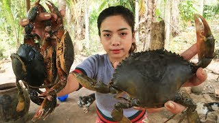 Yummy cooking Crab recipe - Cooking skill