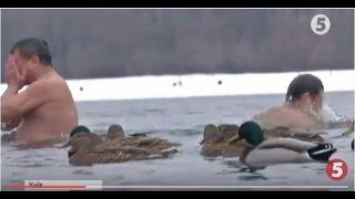 Водохреща у Гідропарку  качки не поступилися святою водою