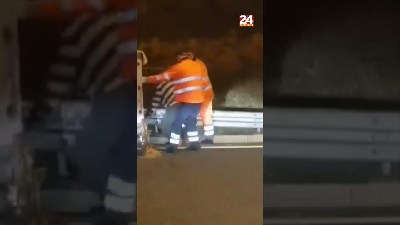 Svinja nije htjela u kobase, bježala po autocesti kod Otočca #shorts