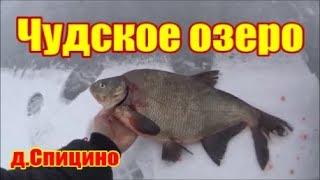 Чудское озеро 2019 чудная рыбалка д.Спицино 6 км в море часть 2