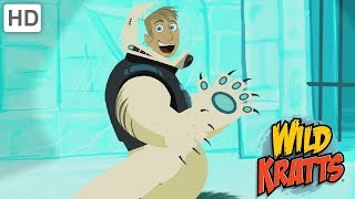 Wild Kratts - Playing Hockey in the Wild on Christmas Day