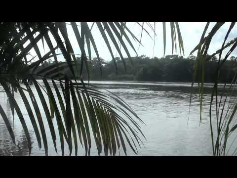 Sweet Salone - Travels in Sierra Leone
