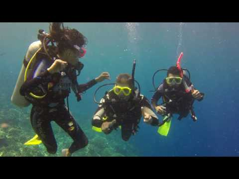 AMAZING SIPADAN DIVING VIDEO!