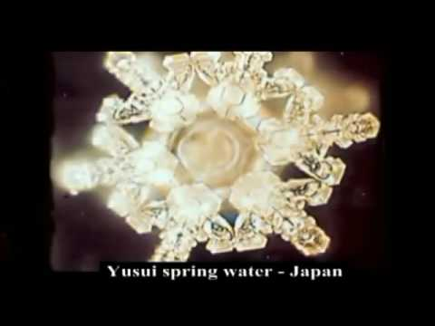 Cymatics   Sacred Knowledge of Vibrations and Water