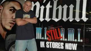 Pitbull Welcome To Miami Official, With Lyrics