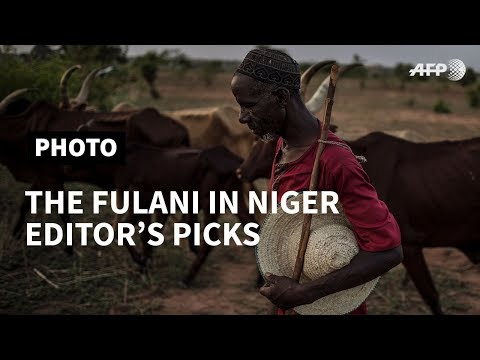 PART III - The Fulani in Niger: in pictures I AFP