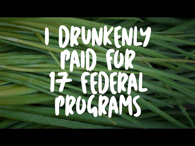 i-drunkenly-paid-for-17-federal-programs