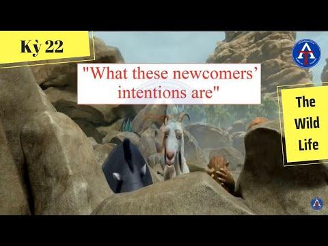 [HỌC IDIOM QUA PHIM] - What These Newcomers' Are (phim The Wild Life: Lạc trên hoang đảo)