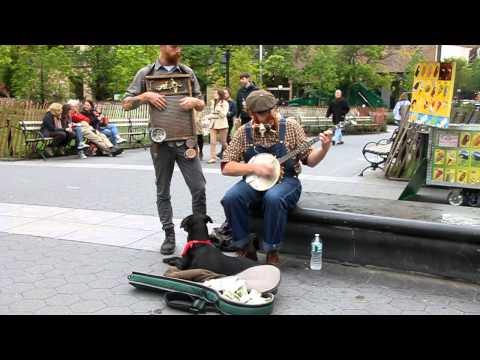 Washboard banjo & kazoo Washington Square Park  (Tequila Minsky)