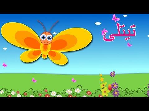 Titli Hoon Main Titli Hoon and More | تیتلی ہوں مئی تیتلی ہوں | Urdu Poems Collection for Kids