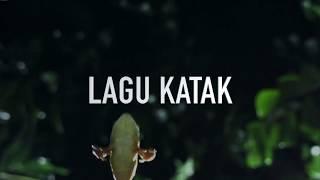 Download ROARM - Lagu Katak