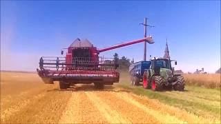 haverst moisson 2016 case ih axial flow 2388