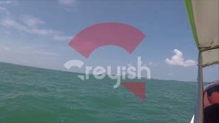"G-reyish [그레이시] "" Johnny gogo "" [쟈니고고] Teaser ver.2"