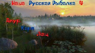 Наша Русская рыбалка 4 Острог Амур Карп Лещ Фармим на Карповое удилище