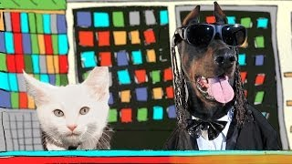psy hangover feat snoop dogg with kittens and dogs