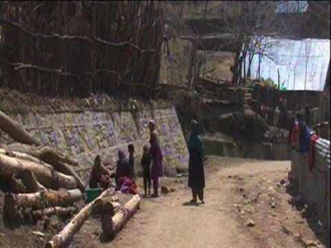 तेंदुओं ने इस गांव में मचाई दहशत, घरों से निकलने में घबरा रहे लोग