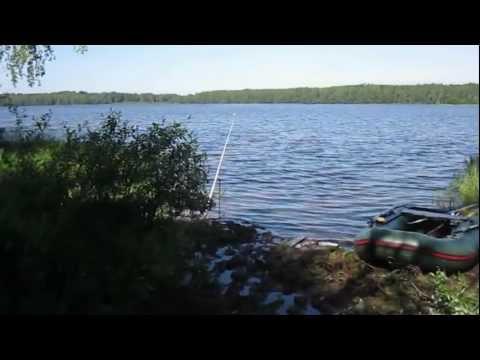 летняя рыбалка на озере бабинское кингисеппский район