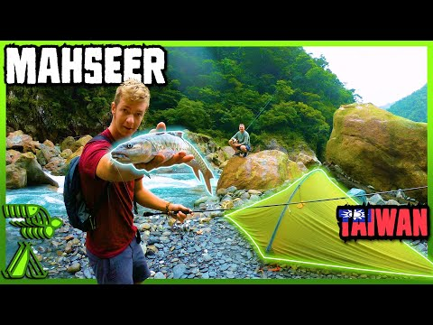 Taiwan Masheer Fishing / Camping 2 Nights