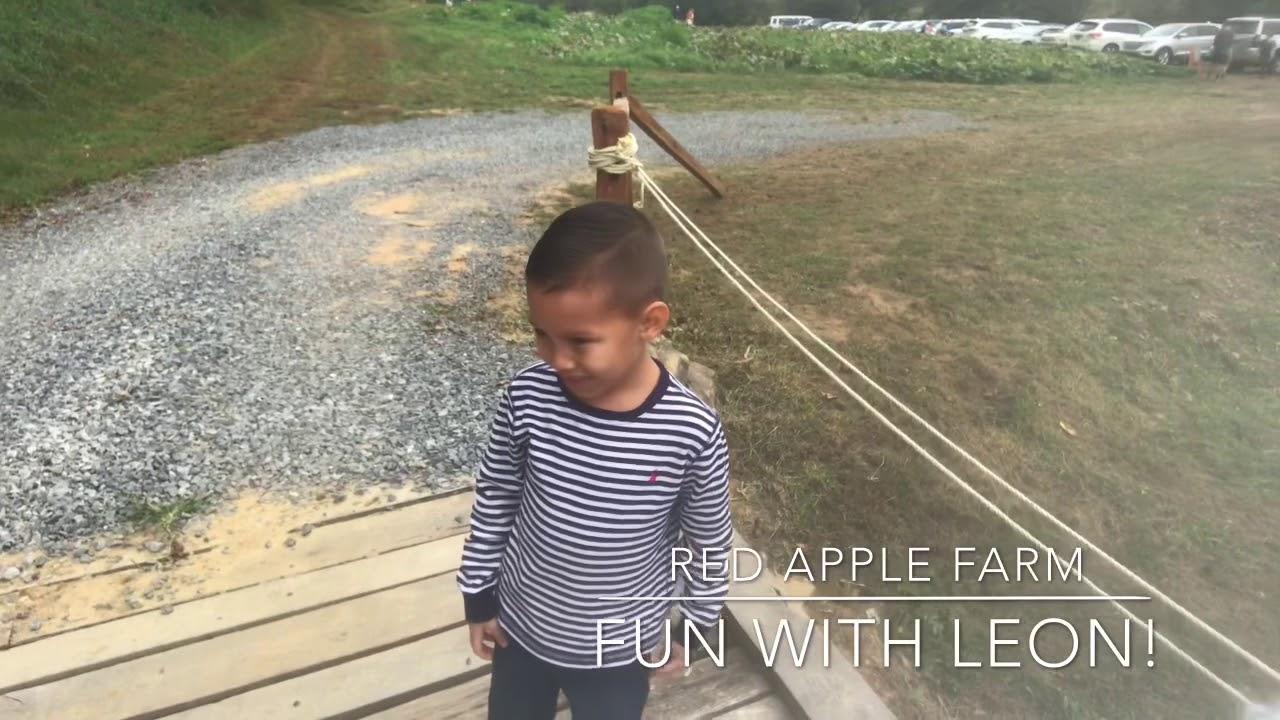 Red Apple Barn in Ellijay Ga with Leon!
