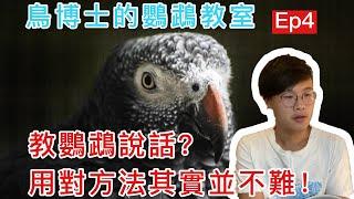 【小黃帽鸚鵡】「小黃帽鸚鵡」#小黃帽鸚鵡,教鸚鵡說話其實沒...