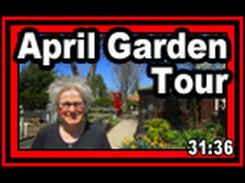 April Garden Tour - Wisconsin Garden Video Blog 758
