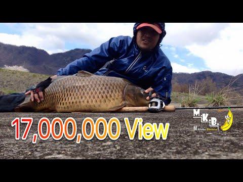 ตกปลาในแม่น้ำ ผิดคิวโดนปลาใหญ่ 9+kg.