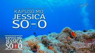 Kapuso Mo, Jessica Soho: Finding Nemo or Dory