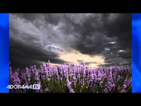 Stormy Skies Ep 308: You Keep Shooting with Bryan Peterson: Adorama Photography TV
