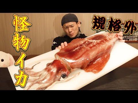 �大食�】�格外�巨大イカを丸��食��~刺身&巨大イカリング~