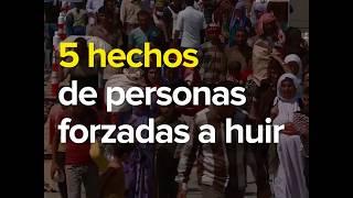 Tendencias Globales 2016: 5 hechos sobre las personas forzadas a huir